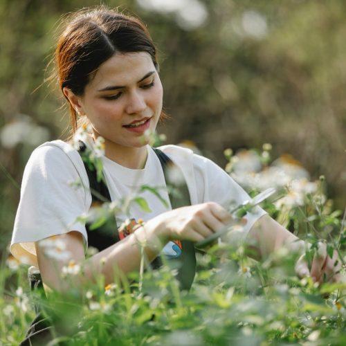 Trädgårdsdesign: Fyra Sätt att Förbättra ditt Utomhusområde